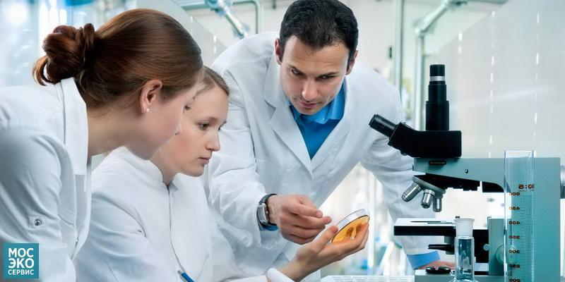 Договор на проведение лабораторных и инструментальных исследований