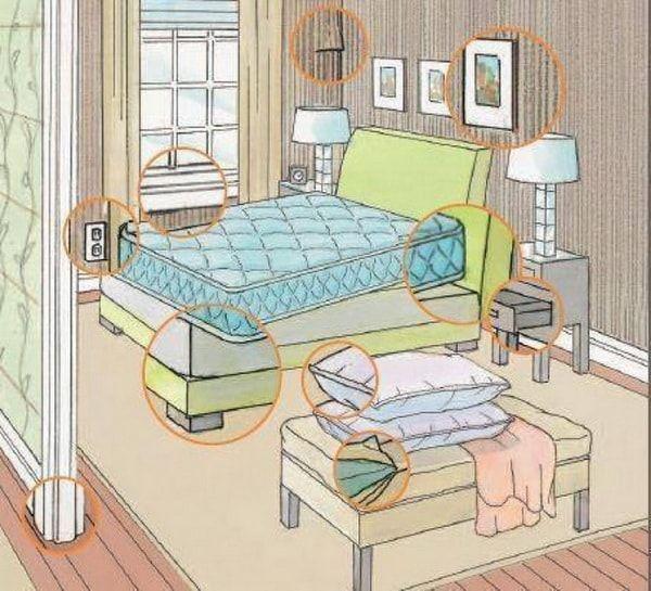 Как обнаружить постельных клопов?