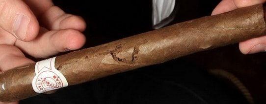 Сигара, изъеденная табачным жуком.