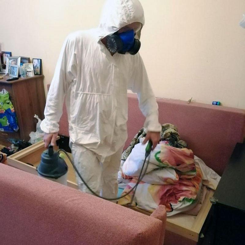 Уничтожение клопов в Одинцово