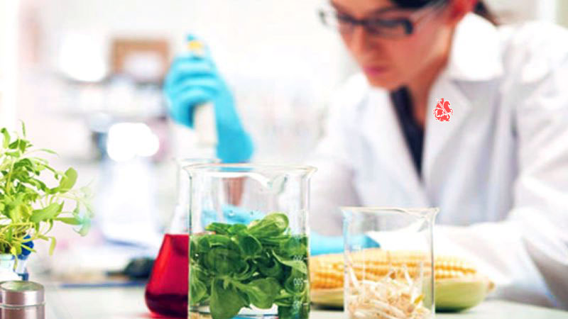 Анализ процессов формирующих качество готовой продукции