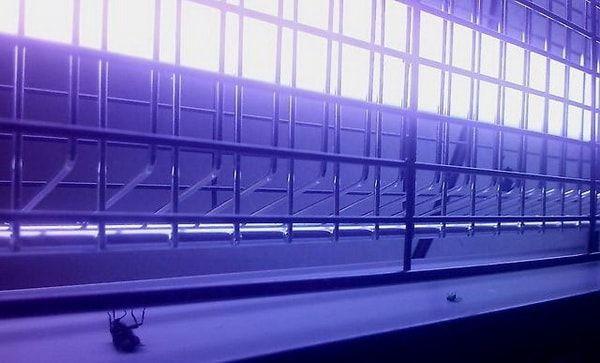 Недорогие люстры для дома в розницу в Москве купить по