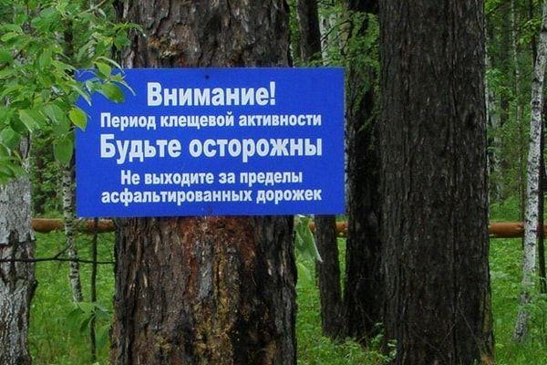 Предупреждение о клещевой активности