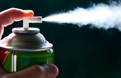 Как уничтожить блох в квартире химические средства